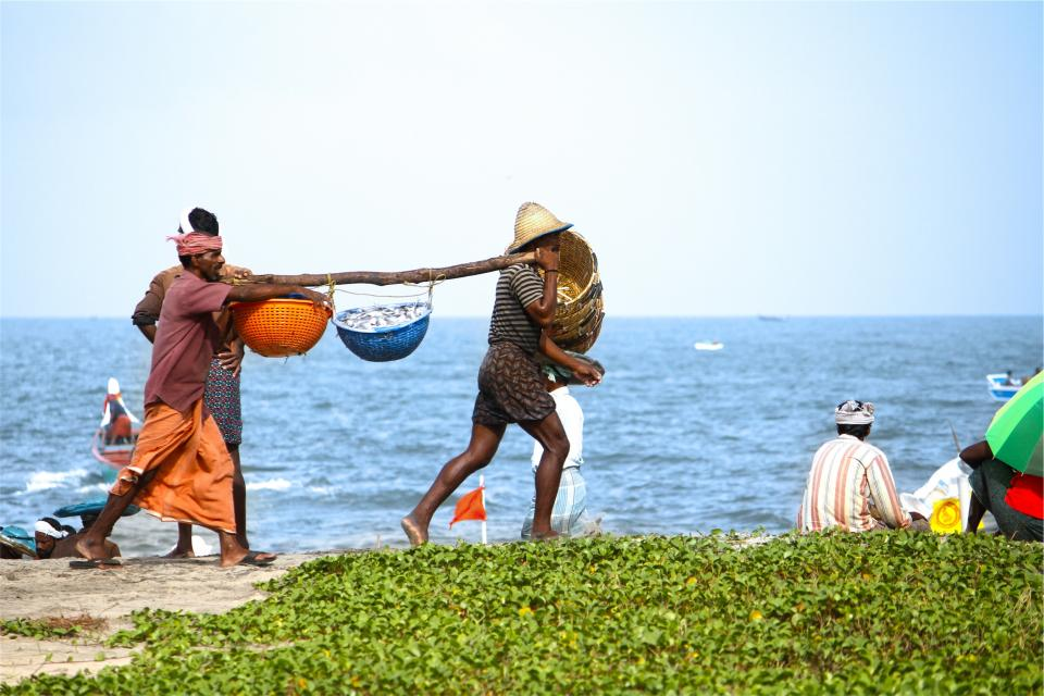 people, baskets, fish, beach, water, working, labour