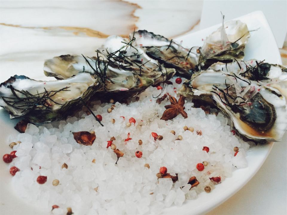 oysters, seafood, shells, ice