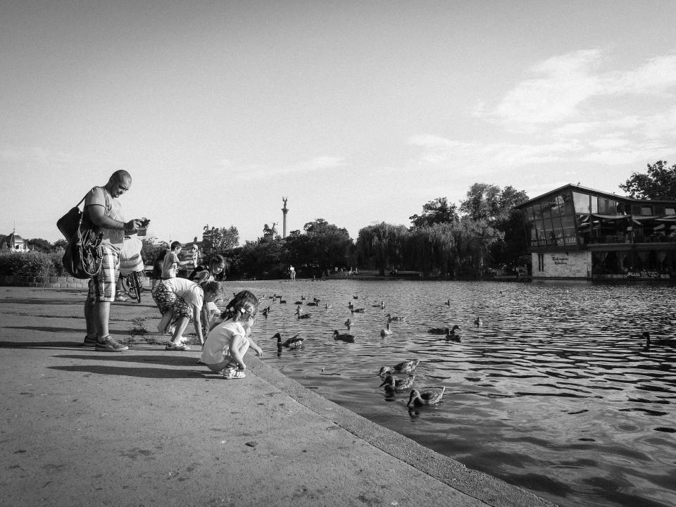 kids, children, ducks, birds, feeding, father, man, guy, photographer, water, canal, black and white
