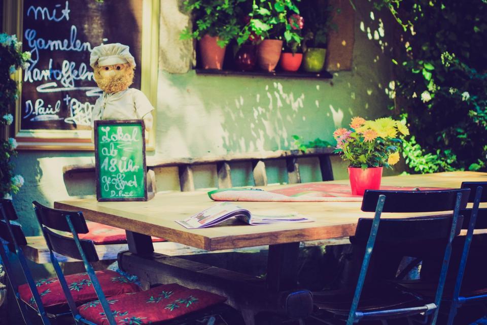 restaurant, chef, menu, food, magazine, chairs, table, plants, flowers, green, cozy