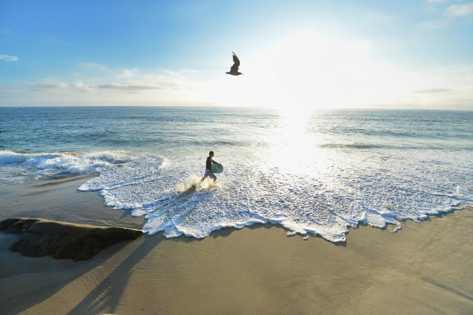 sunrise, sunny, sushine, nature, clouds, sky, bird, animal, fly, beach, sand, coast, sea, water, ocean, waves, people, man, surfing, board, sport, surfer