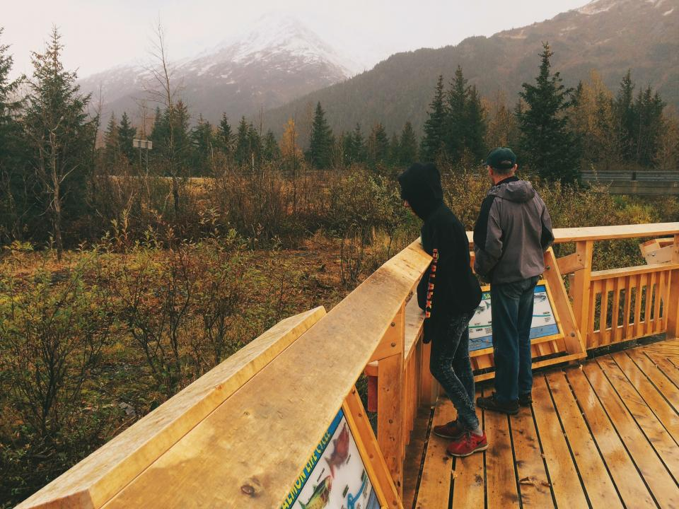 wood, deck, outdoors, nature, forest, woods, trees, backyard, porch, people, mountains, landscape, peak, wet, rain