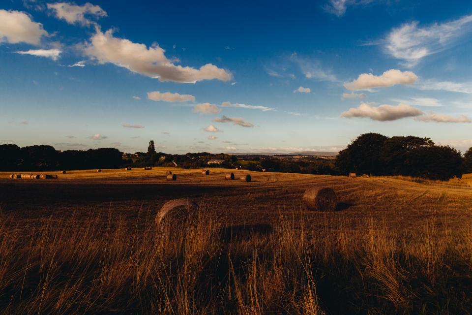 farm, fields, hay, rolls, grass, country, sky, clouds, sunshine
