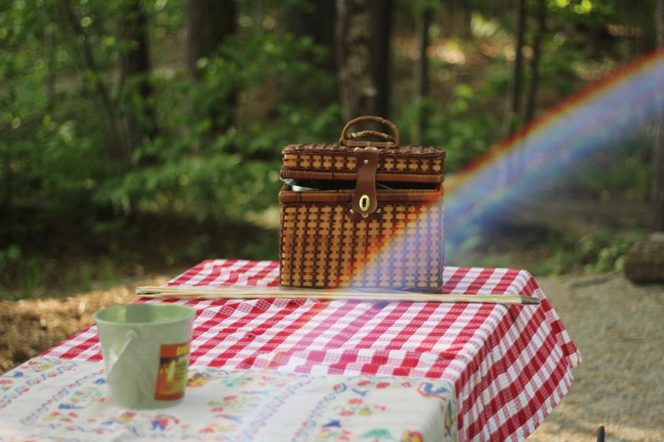 table, cloth, basket, picnic, garden, rainbow, outdoor, trees, stick, nature, bokeh