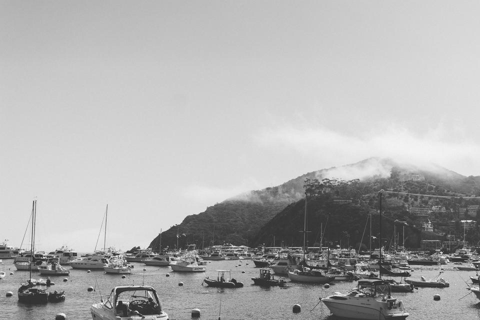 catalina, boats, marina, harbor, harbour, island, ocean, coast, black and white