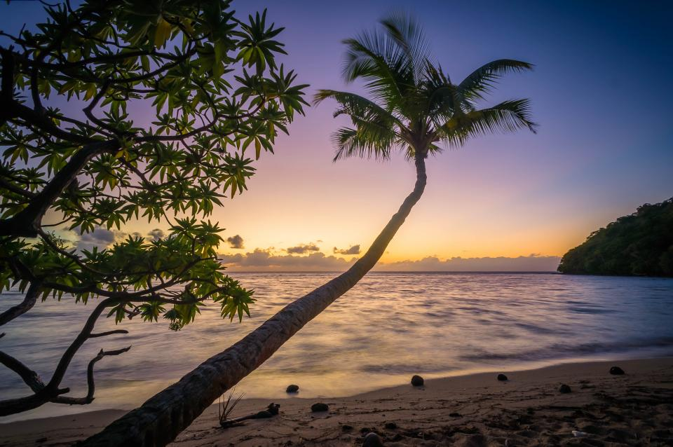 sunset, dusk, beach, sand, shore, ocean, sea, horizon, palm trees, tropical, trip, vacation, island, landscape, nature