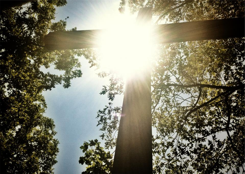 sunshine, cross, religion, catholic, christian, trees