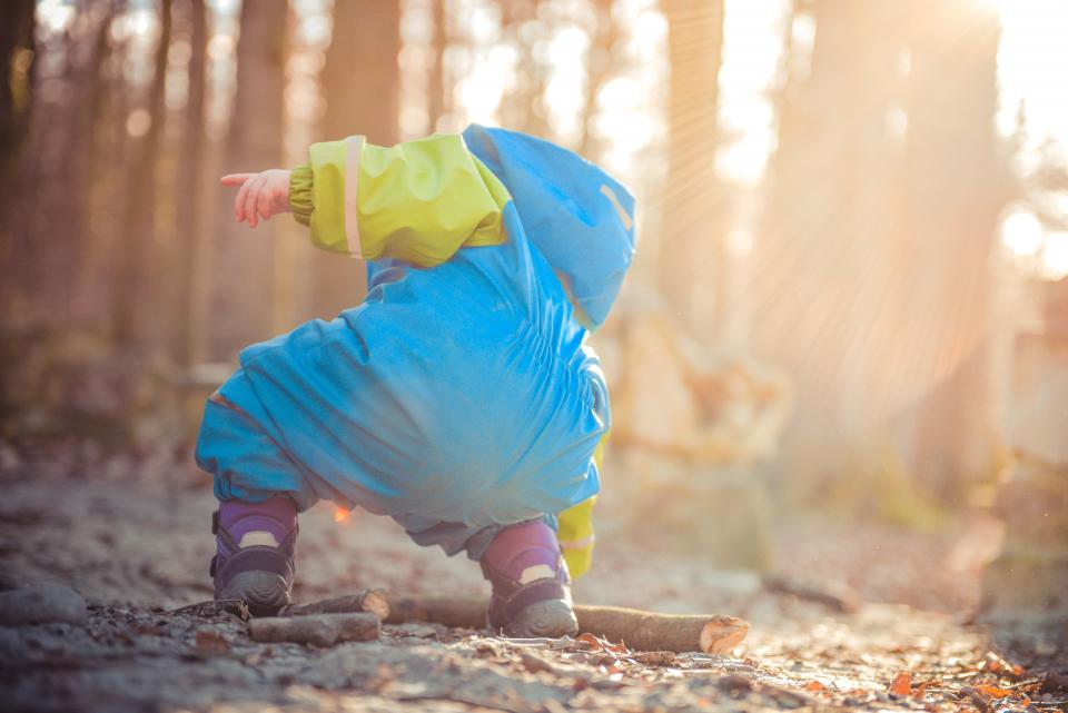 kid, child, playing, outdoors, nature, fall, autumn, leaves, stick, woods, forest, sunlight, sun rays, sunshine