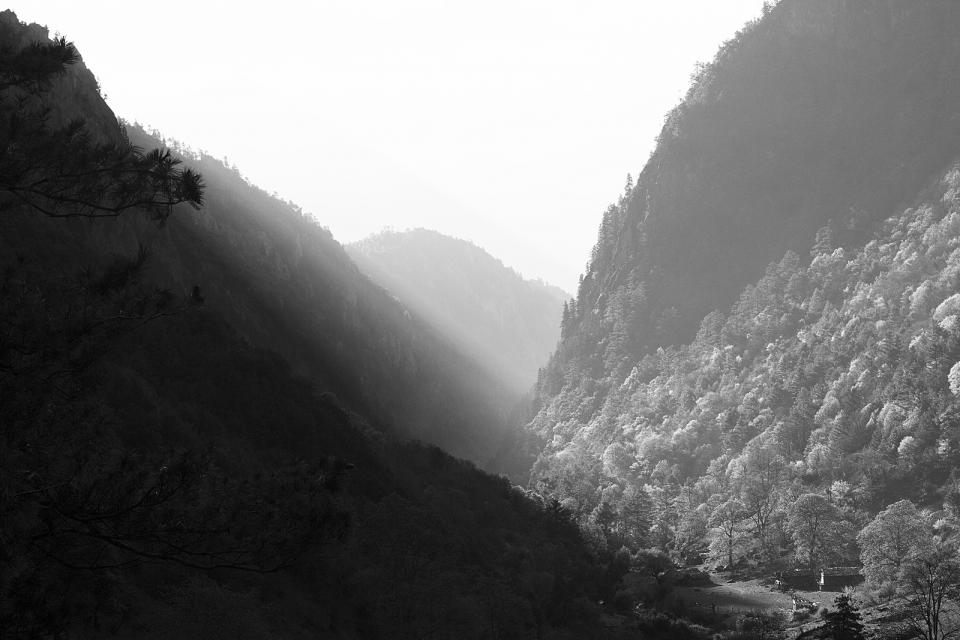 black and white, hills, mountains, trees, nature, sky, grey, valley
