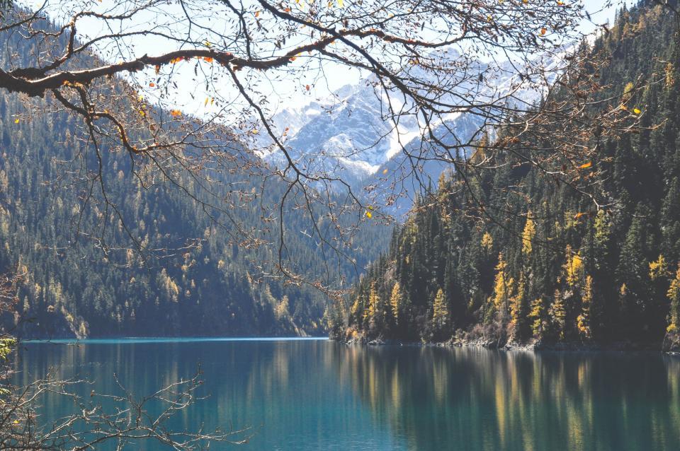 lake, water, mountains, hills, trees, nature, landscape, Five Flower Lake, Jiuzhaigou, Sichuan, China