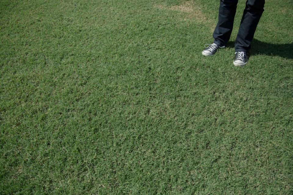 green, grass, converse, shoes, sneakers, jeans, pants