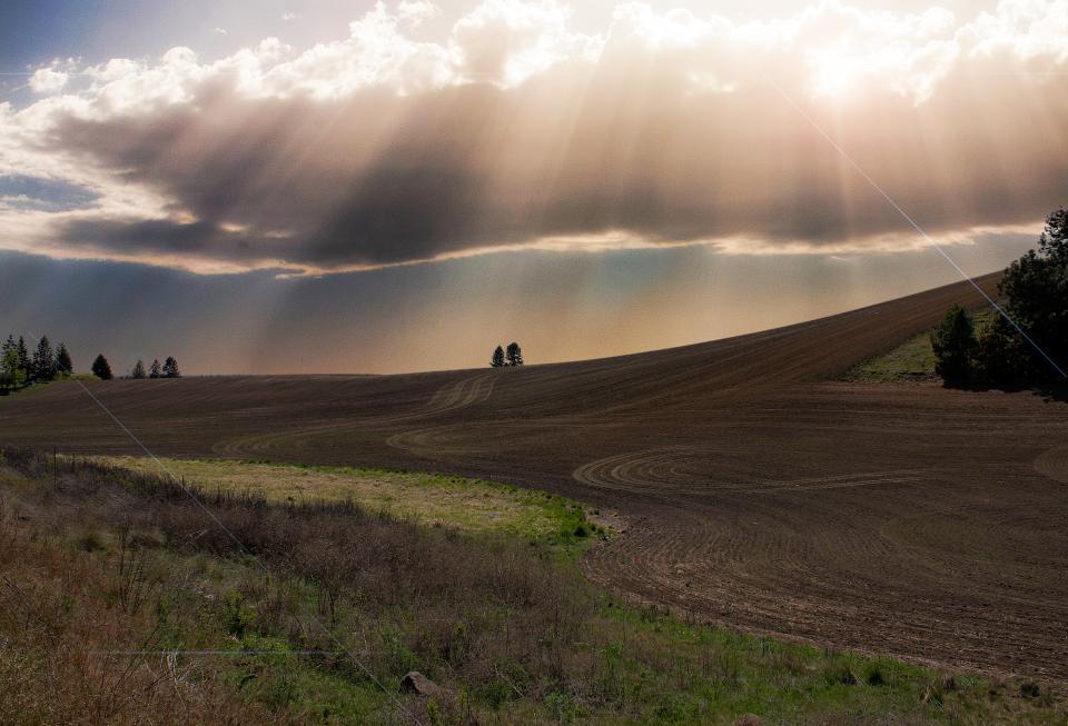 sunbeams, clouds, field, grass, soil, countryside, rural, blue, sky, nature, landscape