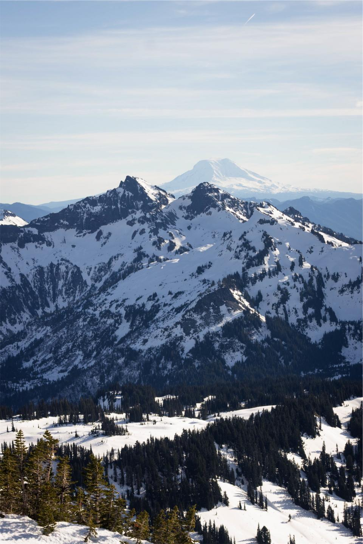 mountains, peaks, cliffs, snow, sunshine, sunny, trees, nature, sky, winter