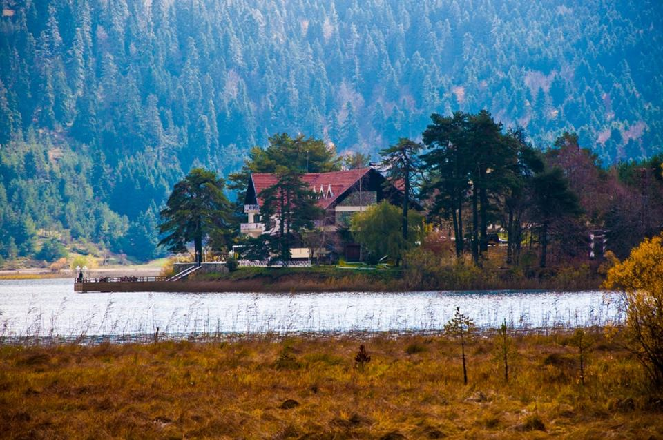 trees, forest, nature, lake, water, house, fields, grass, nature, peaceful, secluded