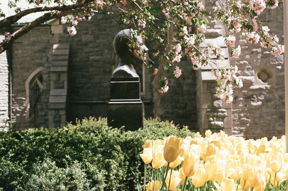 flowers, garden, yellow, statue, bronze