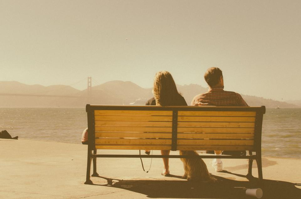 sunny, golden gate bridge, couple, man, woman, brunette, wood, bench, dog, water, mountains