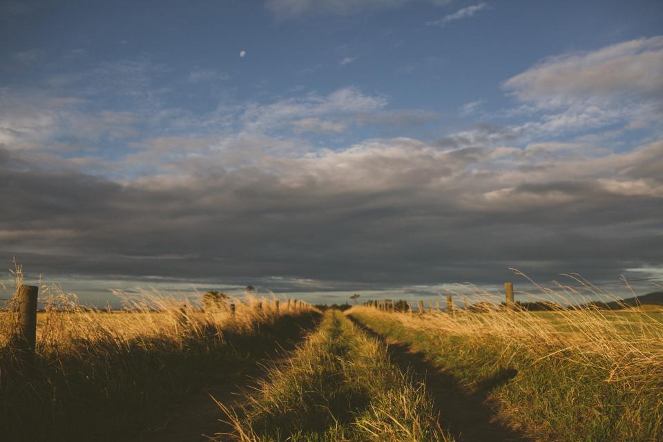 grey, cloud, sky, plains, fields, grass, farm, country, trail