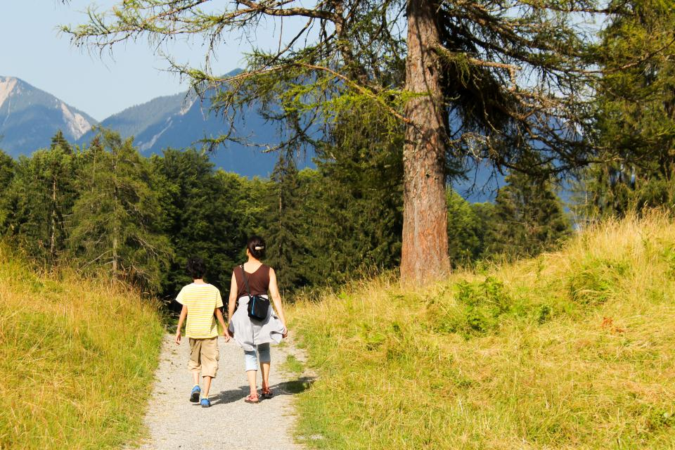 family, mother, child, walk, travel, trek, hike, nature, slope, path, road, grass, forests, trees, view, mountains, sky