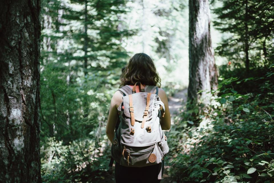 girl, woman, hiking, trekking, backpack, knapsack, forest, trees, woods, nature, outdoors, adventure, people