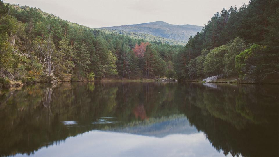 lake, water, reflection, trees, forest, nature, hills, landscape