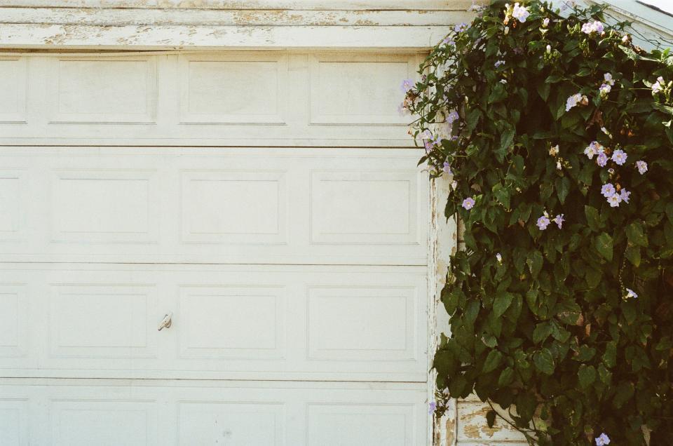 garage door, white, plant, flowers