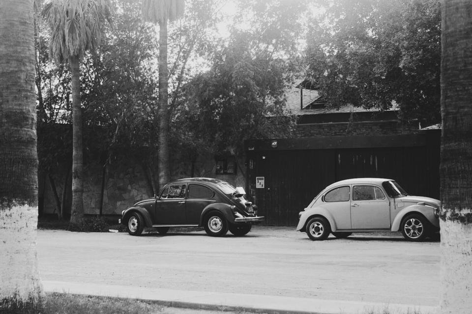 cars, vintage, oldschool, beetle, buggy, street, palm trees, black and white