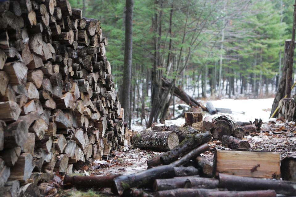 wood, lumber, logs, trees, forest, branches, bark, snow, winter, nature
