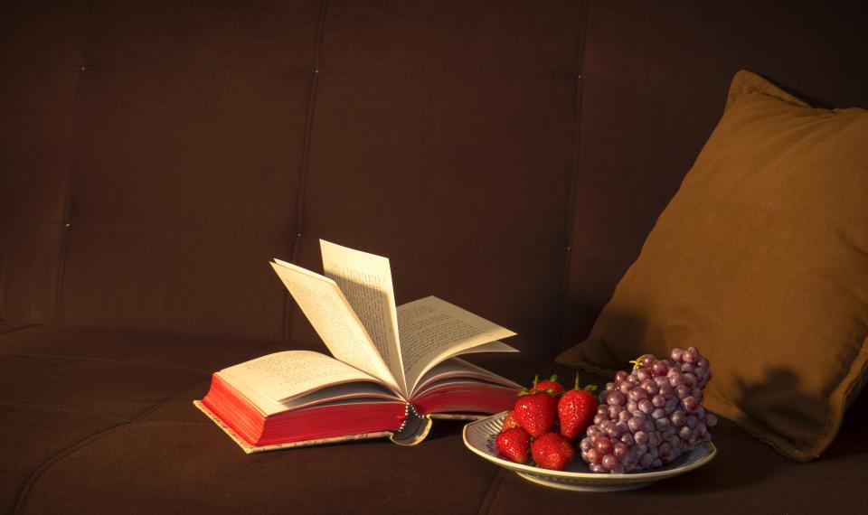 book, reading, fruits, grapes, strawberries, food, healthy, couch, pillow, decor