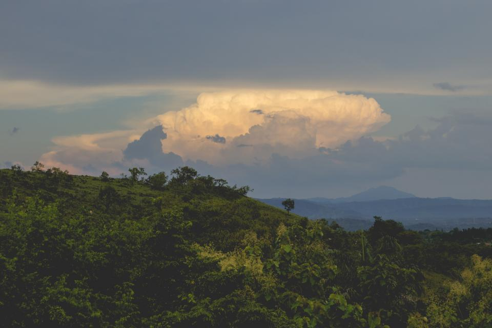green, trees, forest, nature, landscape, mountains, clouds, cloudy, sky, storm