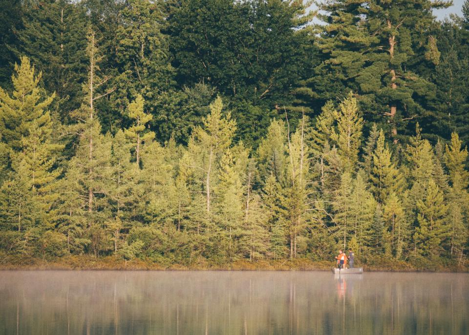 fishing, boat, people, lake, water, boat, trees, forest, woods, nature, outdoors, green