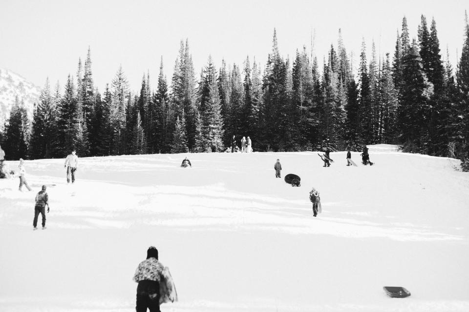 winter, snow, ice, cold, people, skating, toboggan, tobogganing, trees, forest, woods, nature, outdoors, black and white