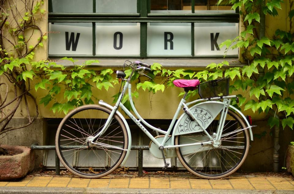 bike, bicycle, plants, pots, leaves, work, window, sidewalk