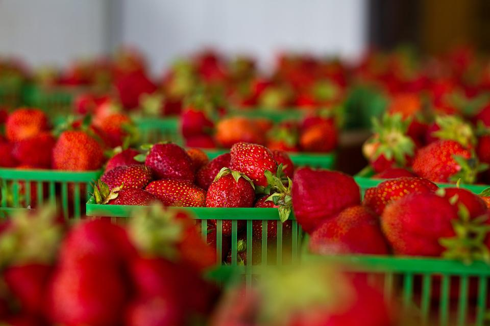 strawberries, strawberry, fruits, healthy, food, red