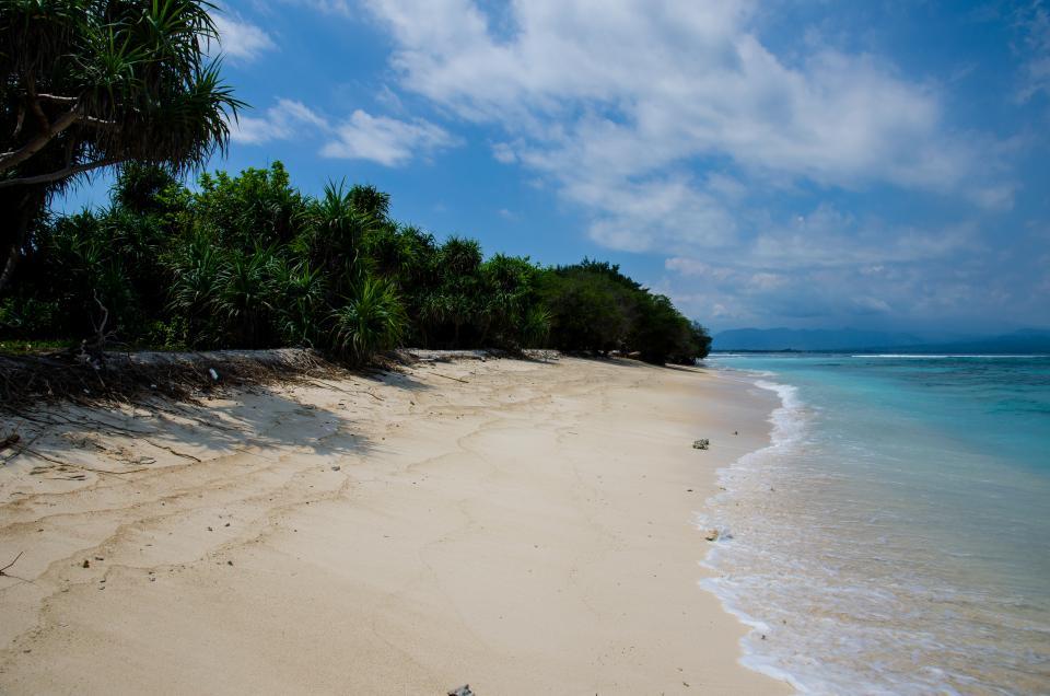 beach, sand, water, ocean, sea, coast, waves, trees, sky, clouds, tropical, paradise, vacation