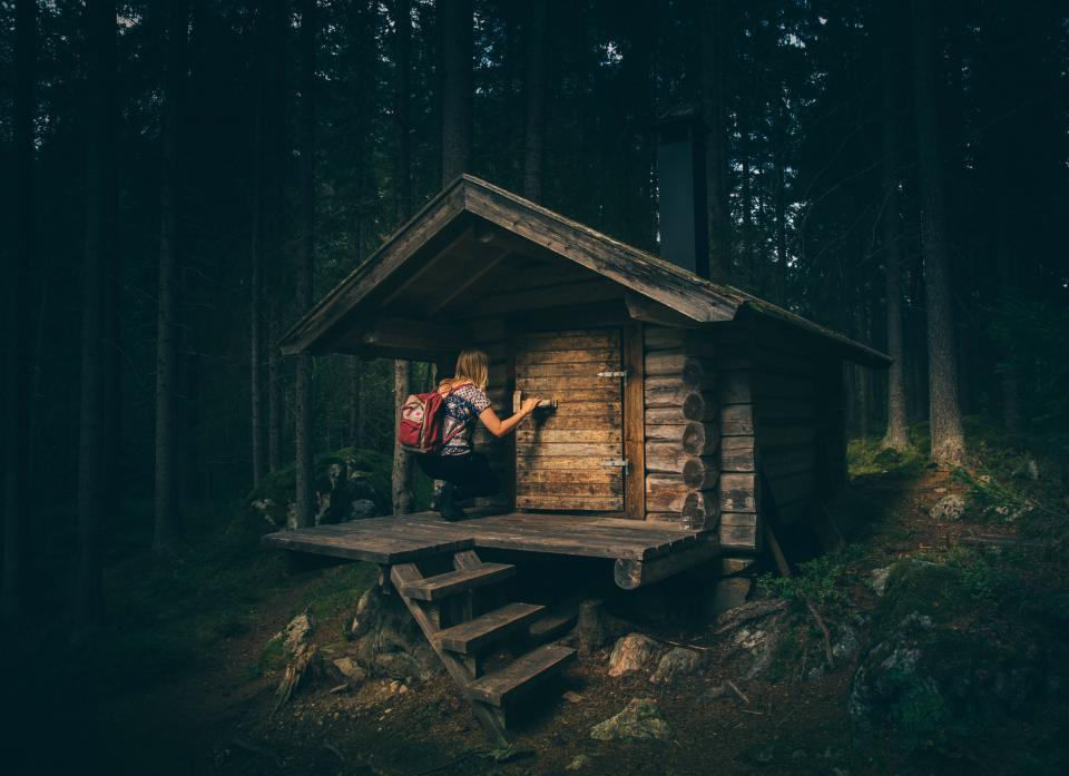 log, cabin, forest, woods, camping, hut, girl, people, trees, nature, outdoors