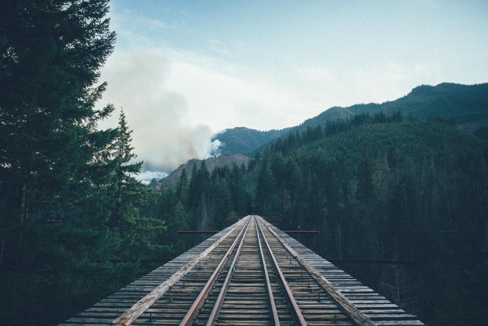 wood, train tracks, railroad, railway, bridge, trees, forest, nature, sky