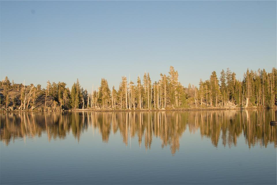 lake, water, reflection, trees, forest, nature