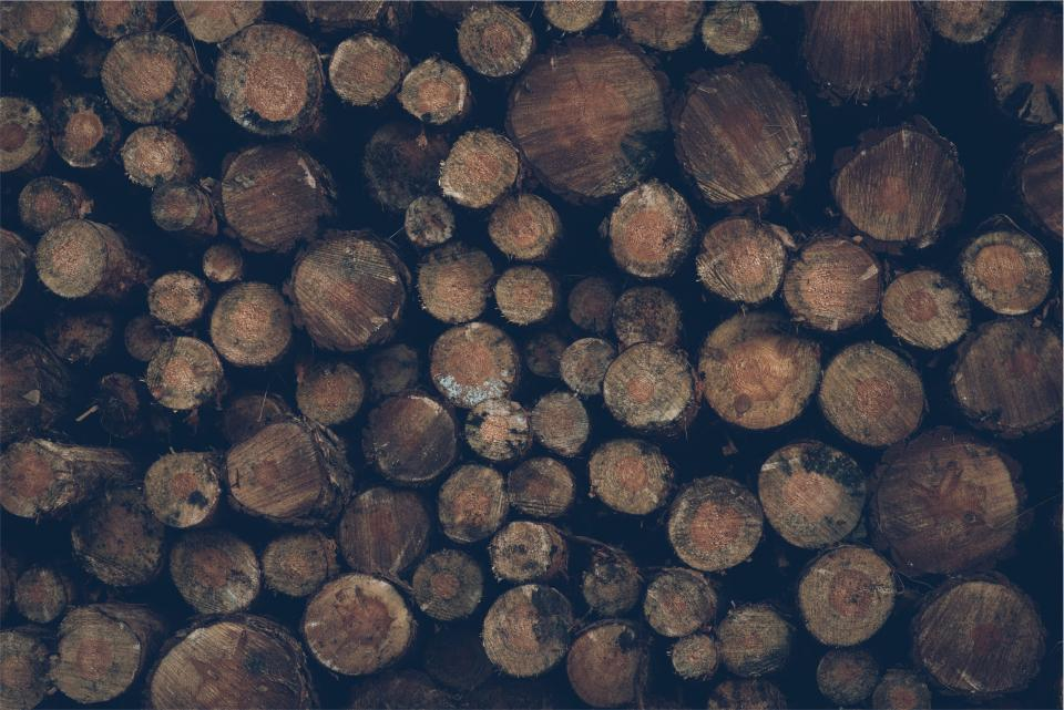 wood, logs, lumber