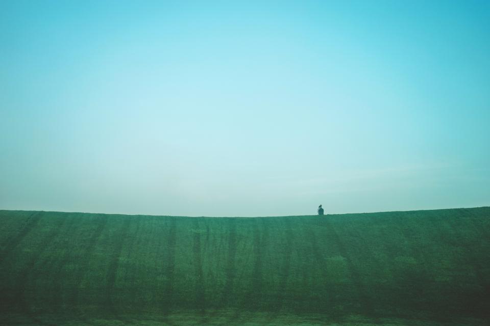 green, grass, field, nature, blue, sky, landscape, horizon, rural, countryside