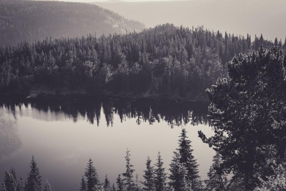 black and white, grey, forest, trees, nature, outdoors, lake, water, hills, mountains