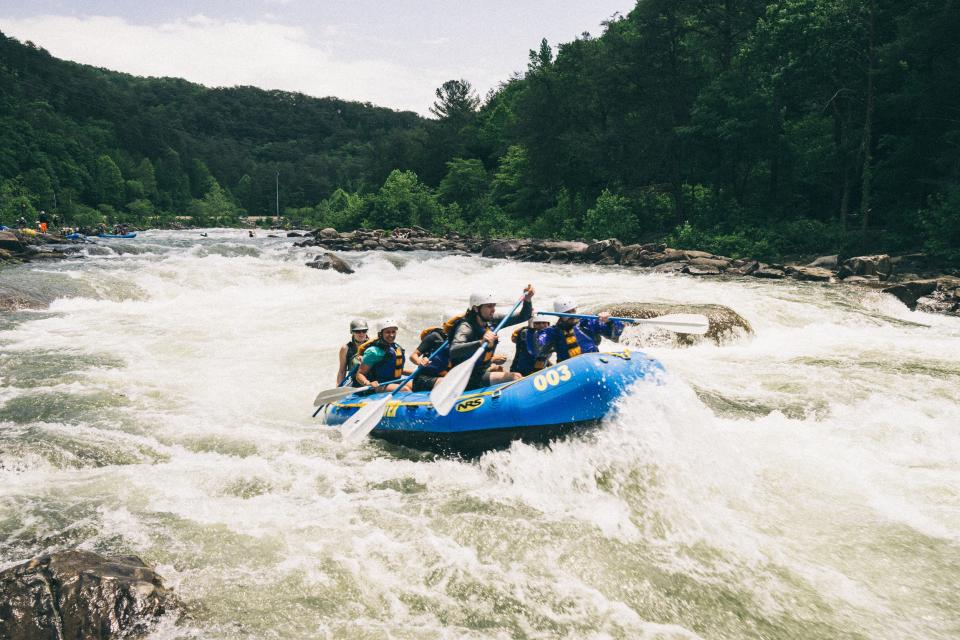 hobbies, sports, white, water, rafting, rapids, rocks, forests, trees, bushes, plants, men, women, people, paddle