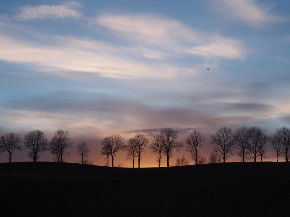 landscape, sunset, dusk, silhouette, trees, sky, clouds, nature
