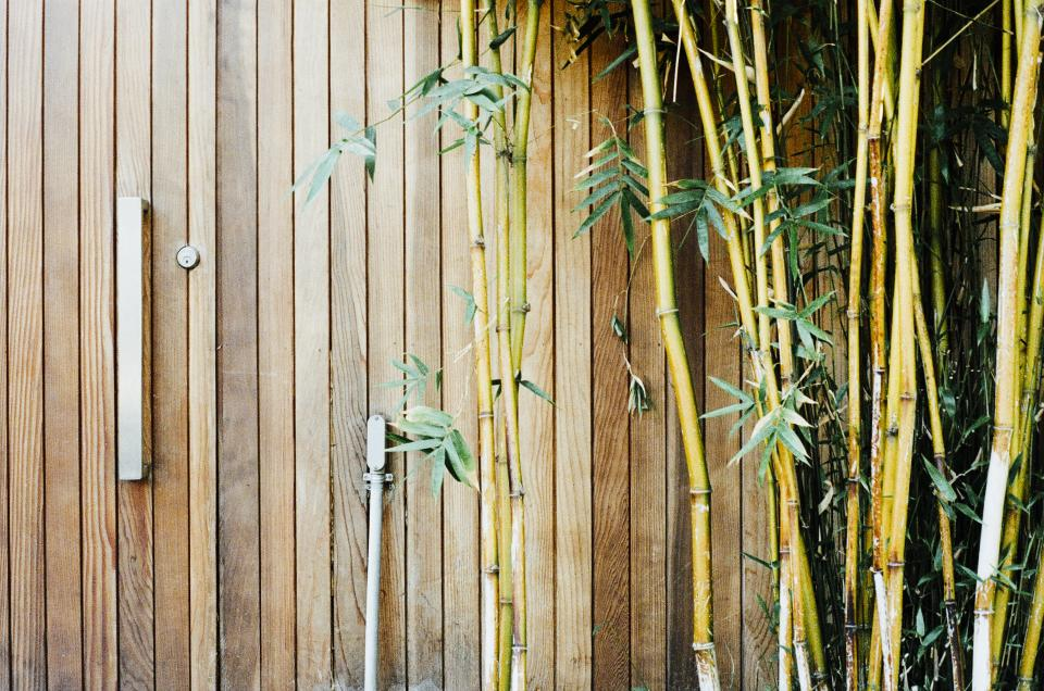 wood, bamboo, gate, lock, branches, leaves
