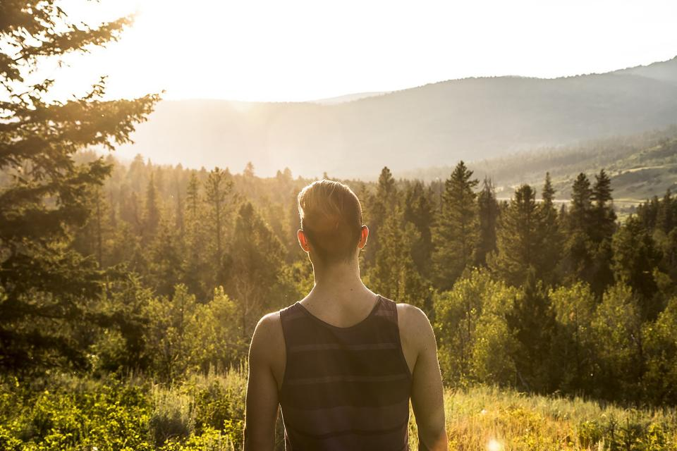 guy, man, trees, forest, woods, nature, landscape, outdoors, sunshine, sun rays, outdoors, adventure, people, mountains