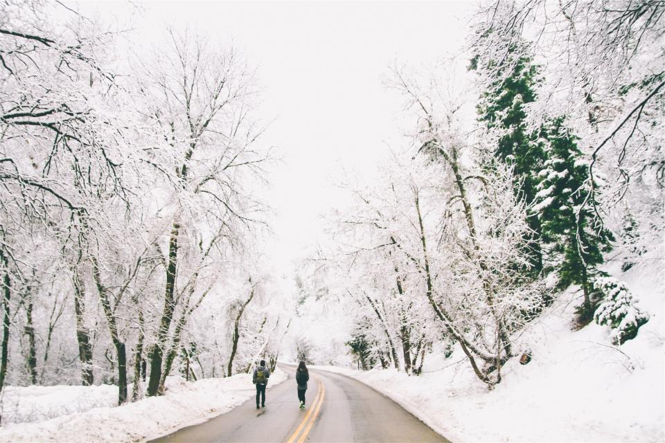people, walking, road, winter, snow, cold, frozen, freezing, trees, rural, backpack, knapsack, pavement
