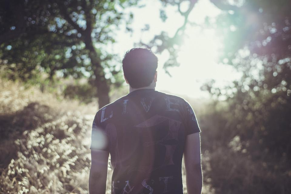 guy, man, forest, woods, nature, sun rays, tshirt, people, outdoors