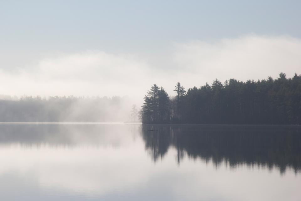 lake, water, reflection, mist, trees, nature, landscape
