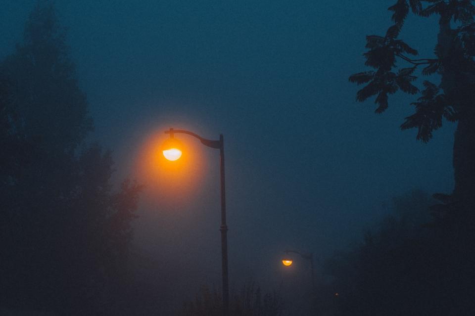 lamp posts, lights, night, dark, evening, fog