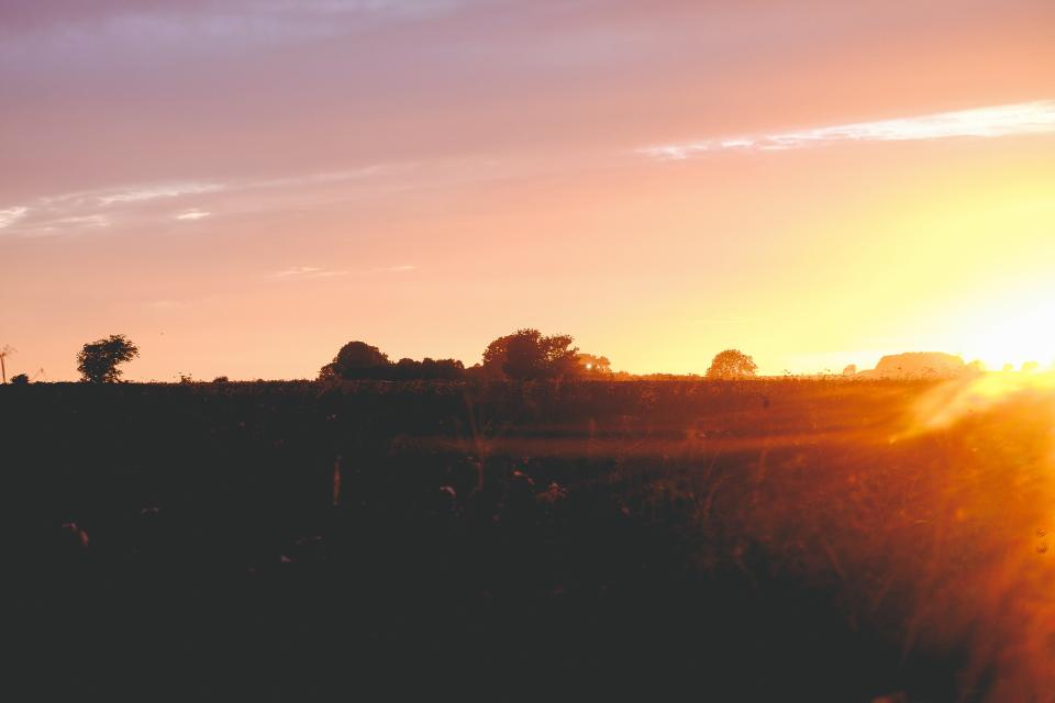 sunset, dusk, sky, field, landscape, rural, countryside