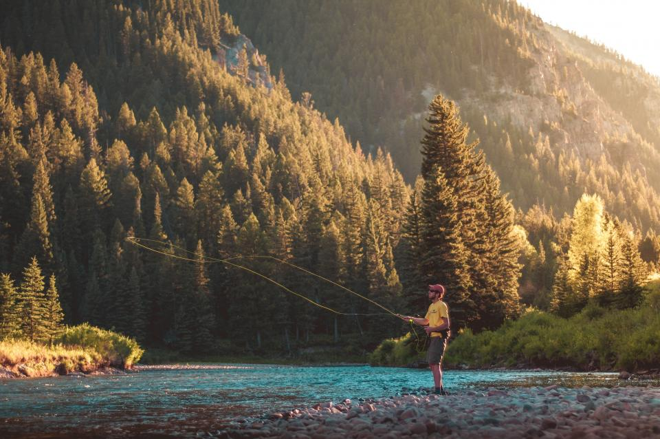 fly fishing, guy, man, camping, outdoors, adventure, nature, sunshine, summer, river, stream, water, rocks, trees, forest, woods, mountains, hills